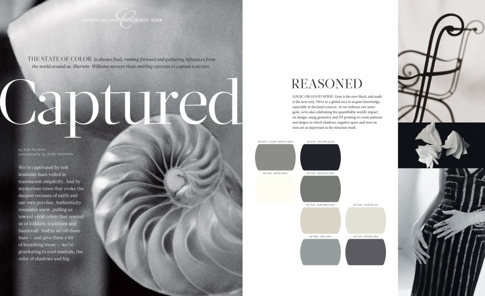 Gray is the new black, and the colors of the reasonsed palette celebrate the elegant, shadowy strength of negative space.