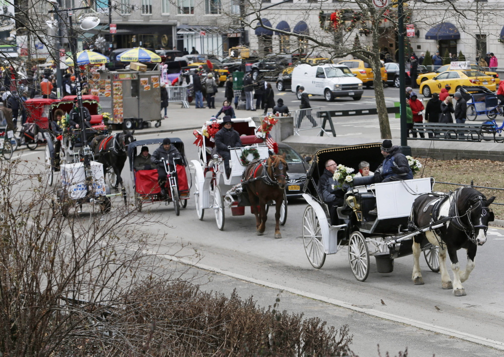 Passengers enjoy a horse-drawn carriage ride near Central Park on New Year's Eve day in New York. Mishaps involving horses that bolt or get hit by cars make headlines every few years, with the most recent traffic or spooking deaths in 2006 and 2007.