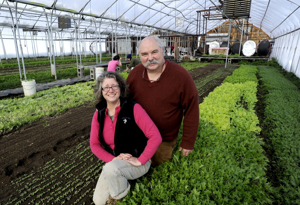 Lisa and Ralph Turner of Laughing Stock Farm have about 250 community-supported agriculture members in the summer and about 110 in the winter, when they raise vegetables in greenhouses.