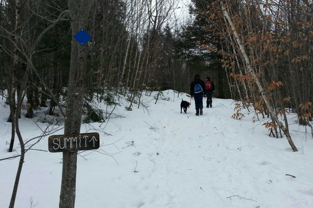 Kid-friendly hiking is among Bald Pate Mountain's many amenities, and dogs too are welcome, provided they're leashed and under control.