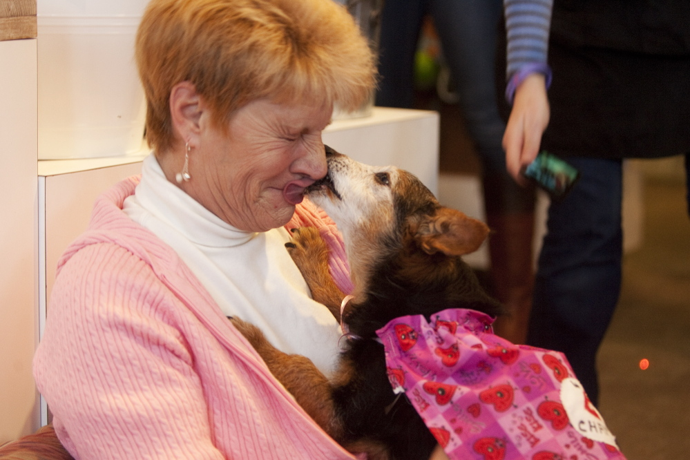 Linda Walton of Saco and her dog Beau perform the winning kiss, 41.88 seconds long, during the Planet Dog Valentine's Day party and kissing contest. Linda and Beau repeated as five-time champions and won $75 worth of Planet Dog products.
