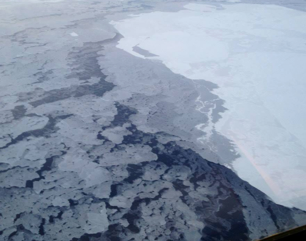 A U.S. government handout photo shows the difference in brightness between the Arctic ice, at right, and the nearby sea. The ice reflects more of the sun's rays back into space.