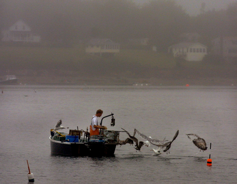 An unidentified lobsterman tends to his traps in this 2002 file photo.