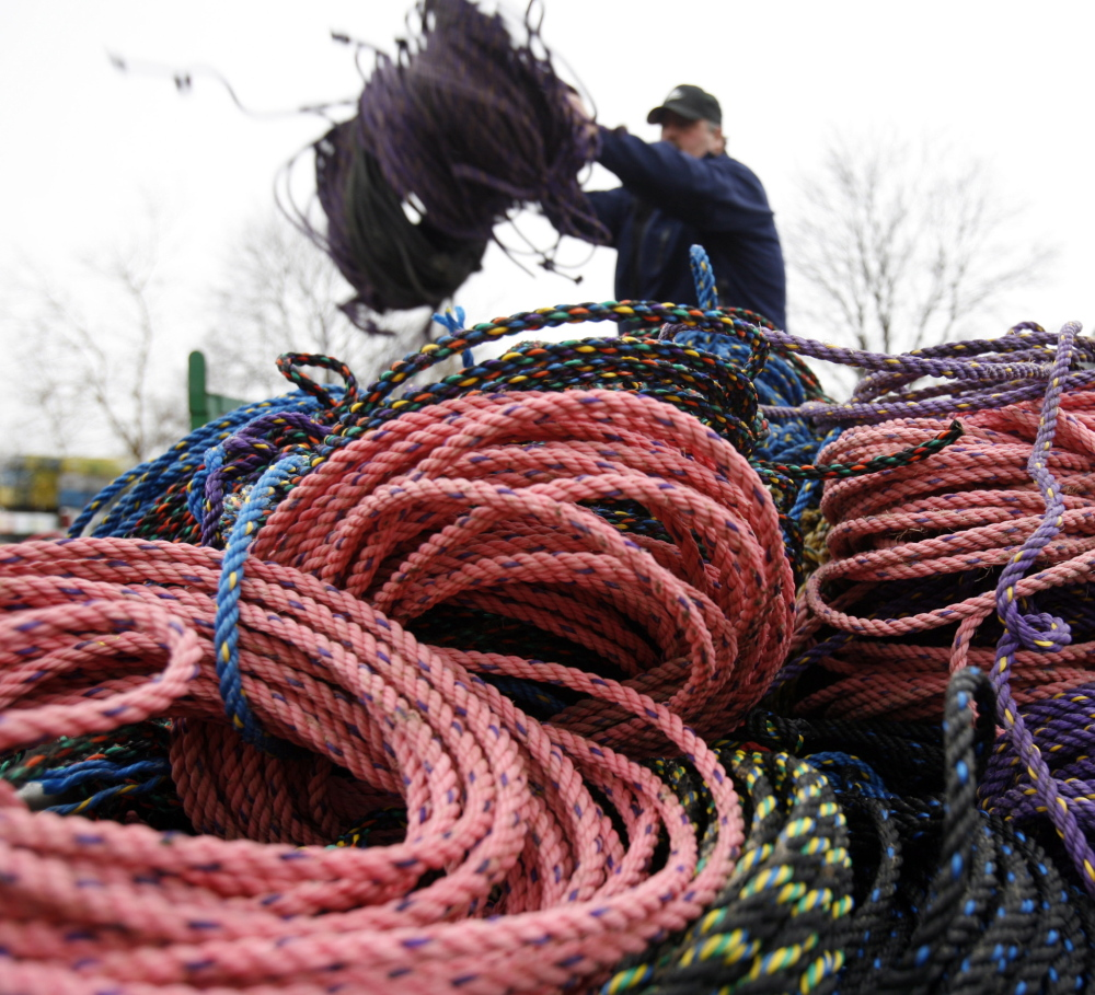 In this March 27, 2009 file photo, a lobsterman throws additional fishing rope onto a pile in Rockland, Maine. Researcher Scott Kraus said at the annual Maine Fishermen's Forum in February 2014 in Rockland, that preventing endangered North Atlantic right whales from becoming entangled in lobster gear could be as simple as changing the color of the rope.
