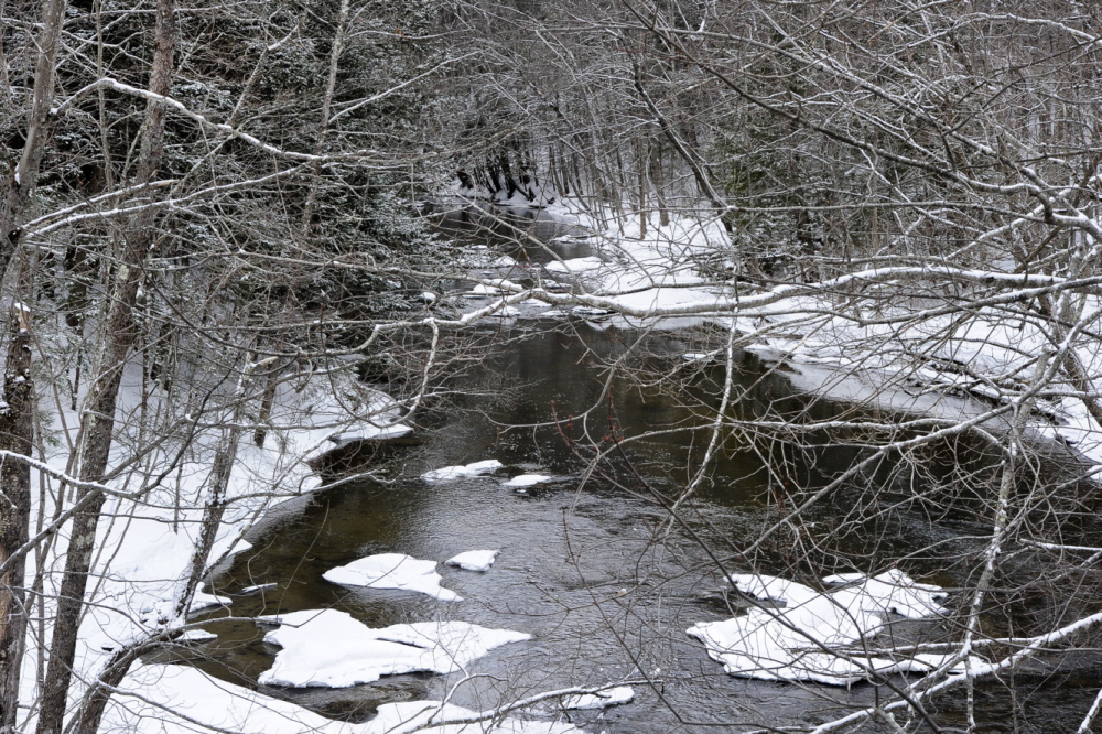 Fresh snow covers trees along the Pleasant River. Snow depth in southern Maine currently ranges from 6 to 18 inches. Parts of western Maine measure 36 to 42 inches.
