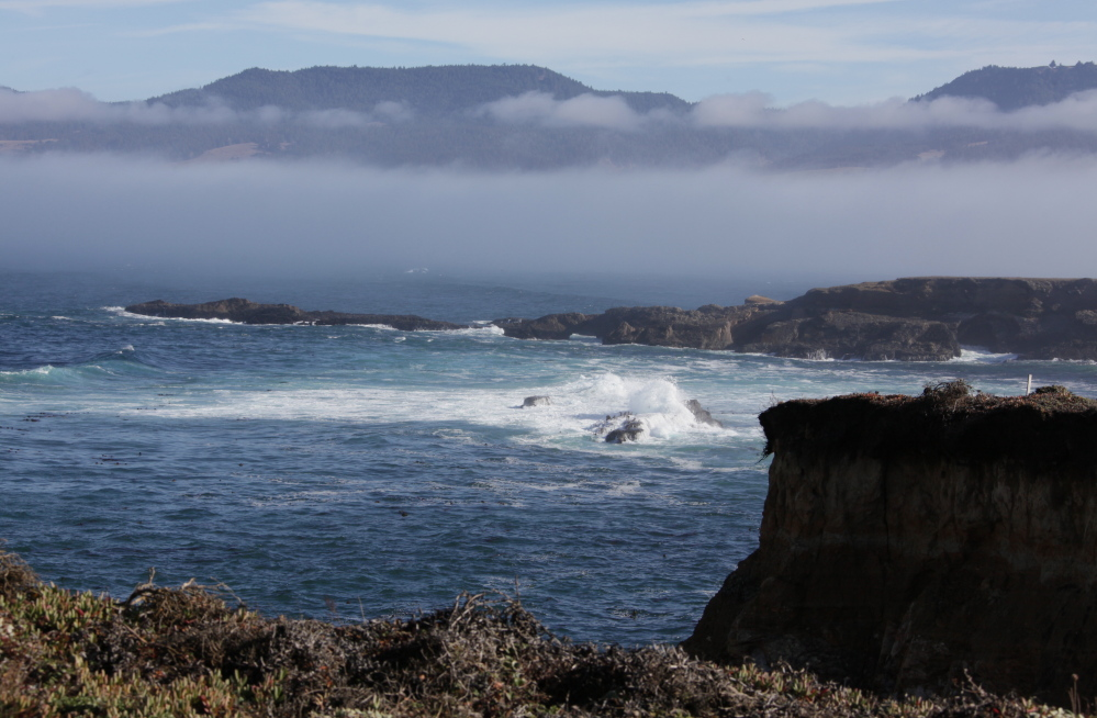 The California coast's Point Arena-Stornetta Public Lands will be designated a national monument, according to White House officials. The move has broad local support and is seen as significant by conservationists.