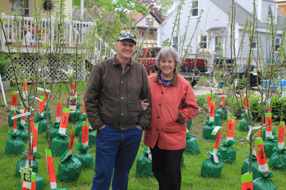 "Alastair Lough and Patricia Proulx-Lough with 49 fruit trees they had planted on Rosemont Avenue in Portland with the help of neighbors. Such efforts are chronicled in the new documentary ""Orchard Revolution."""