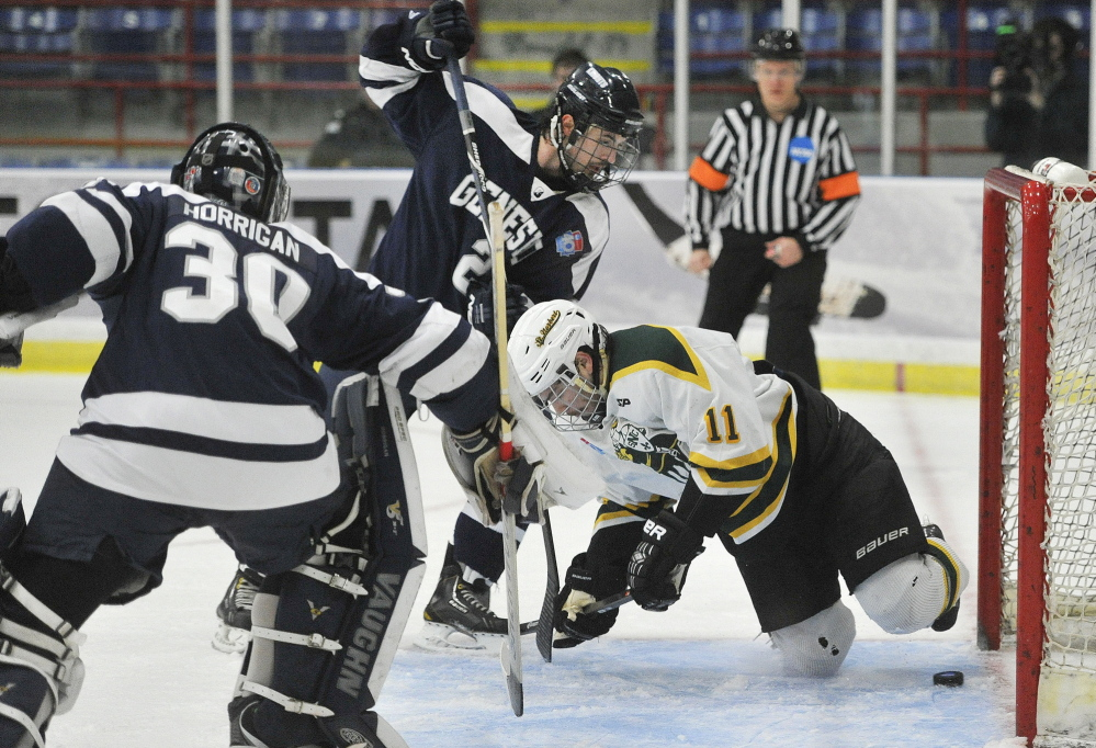 Michael Hill, 11, of St. Norbert scores an unassisted goal late in the second period that proved to be the winner Friday in a 6-2 victory against SUNY-Geneseo in the semifinals of the NCAA Division III Frozen Four at Lewiston. The Green Knights will meet Wisconsin-Stevens Point in the final.