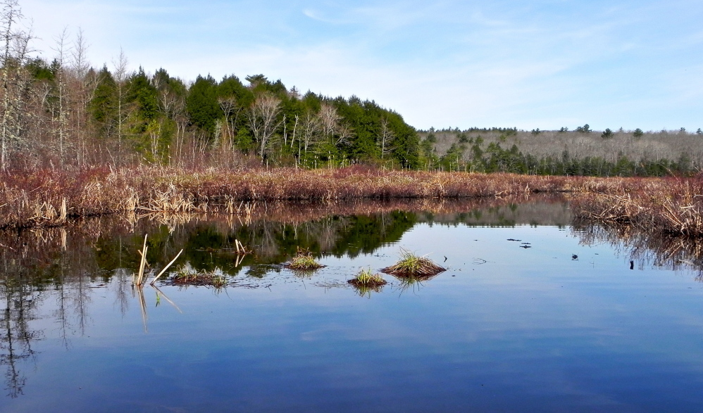 The undeveloped northern end of the Dead River is part of an idyllic canoe outing originating from Alamoosook Lake in Orland. The trip promises sights aplenty and a variety of wildlife, and may tempt you into your first swim of the spring.
