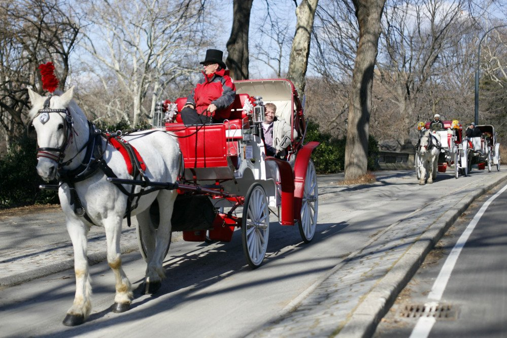 """A horse-drawn carriage rolls through New York's Central Park in this 2010 photo. At first, Mayor Bill de Blasio said he would ban the horses during his first week in office. Now, facing resistance from the usually compliant City Council, he says he will end the """"inhumane"""" practice by year's end."""