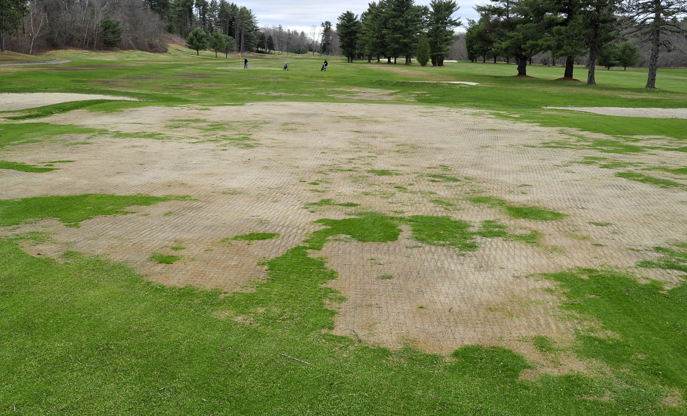 In background, two golfers play to the temporary green Monday on the 4th hole at Riverside Golf Course in Portland. General Manager Ryan Scott said poor turf conditions forced the municipal course to open 12 days later than last year.