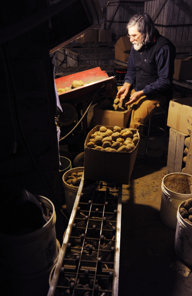 Gerritsen sorts and grades seed potatoes at his farm on Monday. A lawsuit he led against Monsanto brought both victory and defeat. In January 2014, the U.S. Supreme Court declined to hear the group's appeal asking for pre-emptive protection against Monsanto lawsuits. But in June 2013, a three-judge panel at the Court of Appeals for the Federal Circuit ruled that Monsanto had to stand by assurances that it would not sue where trace amounts, less than 1 percent, of its genetic material could be found on farms that had not paid for the Monsanto seed.