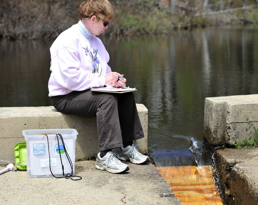 Karen Carlisle, one of many volunteer fish counters documenting the health of Maine's alewife fishery, works a two-hour shift at the Nequasset fish ladder in Woolwich.