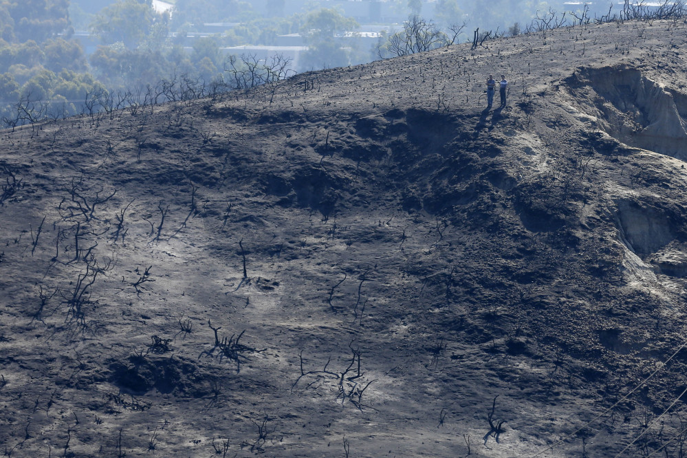 People look over a canyon ravaged by wildfire Friday in Carlsbad, Calif.
