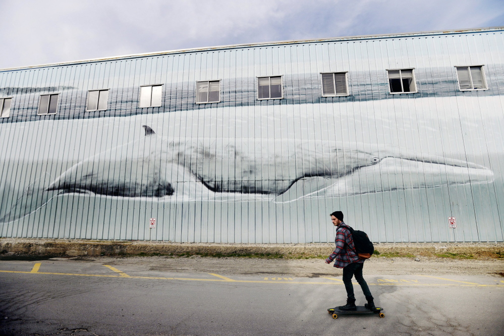 A skateboarder rolls past the Whaling Wall on the Maine State Pier in Portland last month. The Shucks Maine Lobster processing company says its arrival later this year will not alter the mural, which was painted by the artist Wyland in 1993.