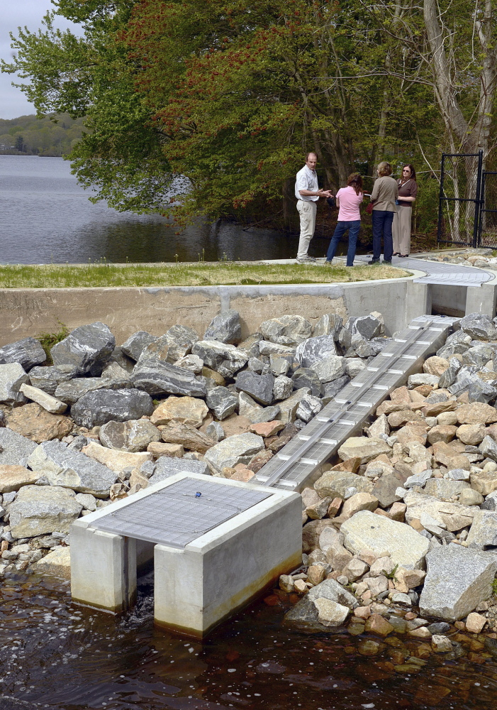 Alewives haven't returned to Rogers Lake in centuries, but they'll have incentive now that a new fish ladder has been installed.