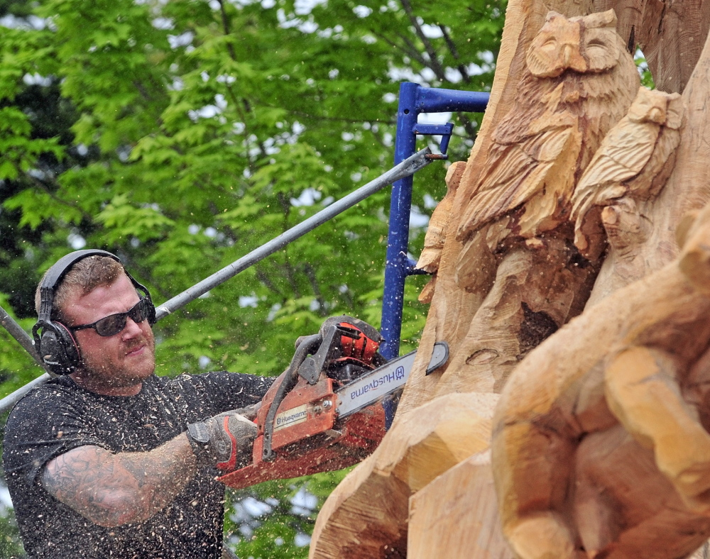 Josh Landry carves a large maple tree in Winthrop. The tree had to be cut down and the owner hired him to turn the base into a sculpture.