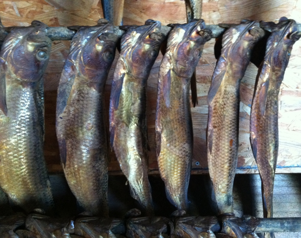 The seasonal abundance of smoked Maine alewives can boost chowders and many other preparations. Peggy Grodinsky photo