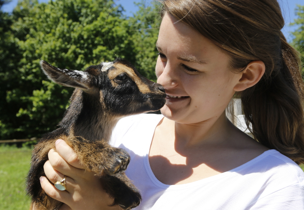 Lila Hall holds Radish, one of her family's goat kids. Derek Davis/Staff Photographer