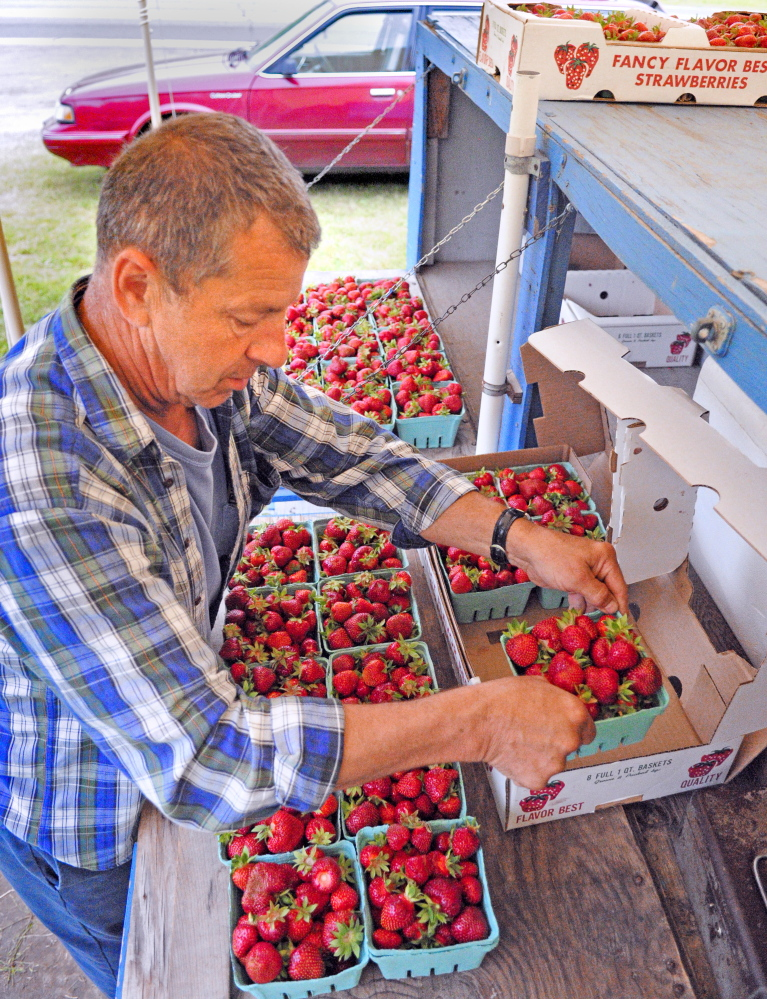 Roger Trask sets out boxes of strawberries at the Trask family stand on Wednesday in Manchester. He runs the stand near the Irving station on U.S. Route 202 with his brother Kenny Trask. They said that their father Edward Trask and other family members have had produce stands at different places along the highway for about 60 years.