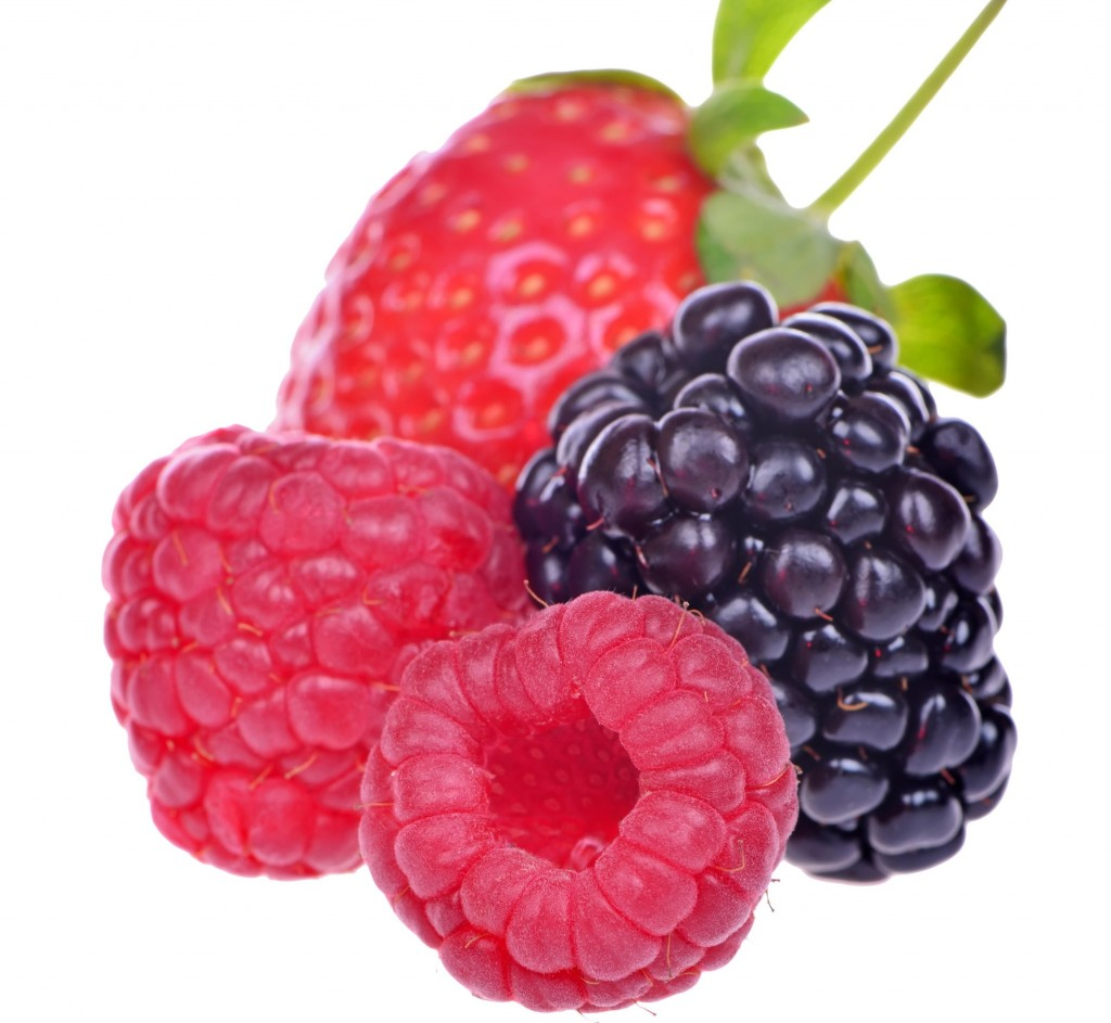 how to have berries as local as your backyard portland press herald