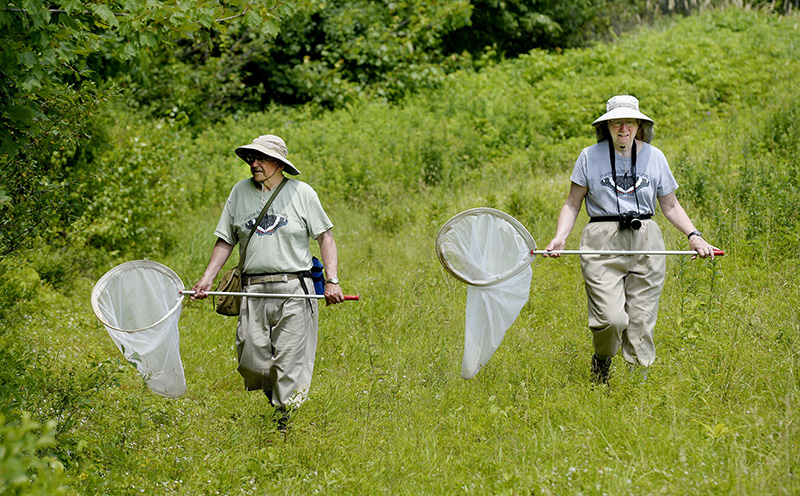 Bob and Rose Marie Gobeil surveying butterflies along the Sylvan trail in Saco Tuesday. Shawn Patrick Ouellette/Staff Photographer