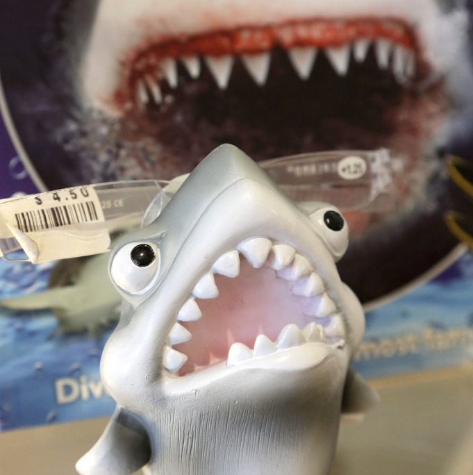 An eyeglass holder in the shape of a shark rests on a shelf in a souvenir shop in Chatham, Mass.