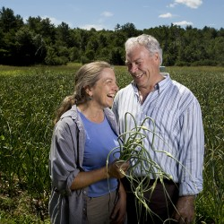 Roberta Bailey and Robert Lemire of Seven Tree Farm pose for a portrait near their field of 1,000 pounds of garlic. Bailey and Lemire grow almost all of their own food on their property, but Lemire tends to a separate crop that he sells commercially.
