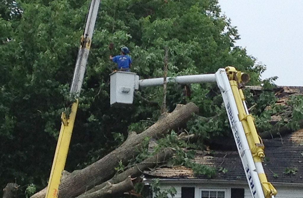 A worker helps in the delicate task of removing a fallen tree from the roof of a York Street home in York.