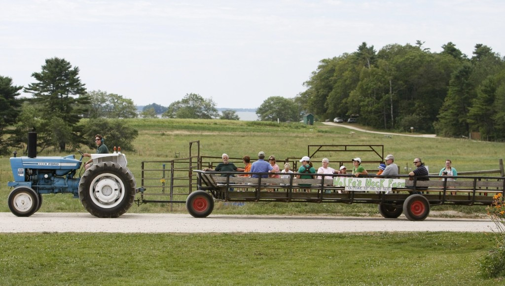 A wagon ride for visitors on Open Farm Day at Wolfe's Neck Farm, a working saltwater farm open to the public in Freeport. The water beyond the field is Casco Bay.
