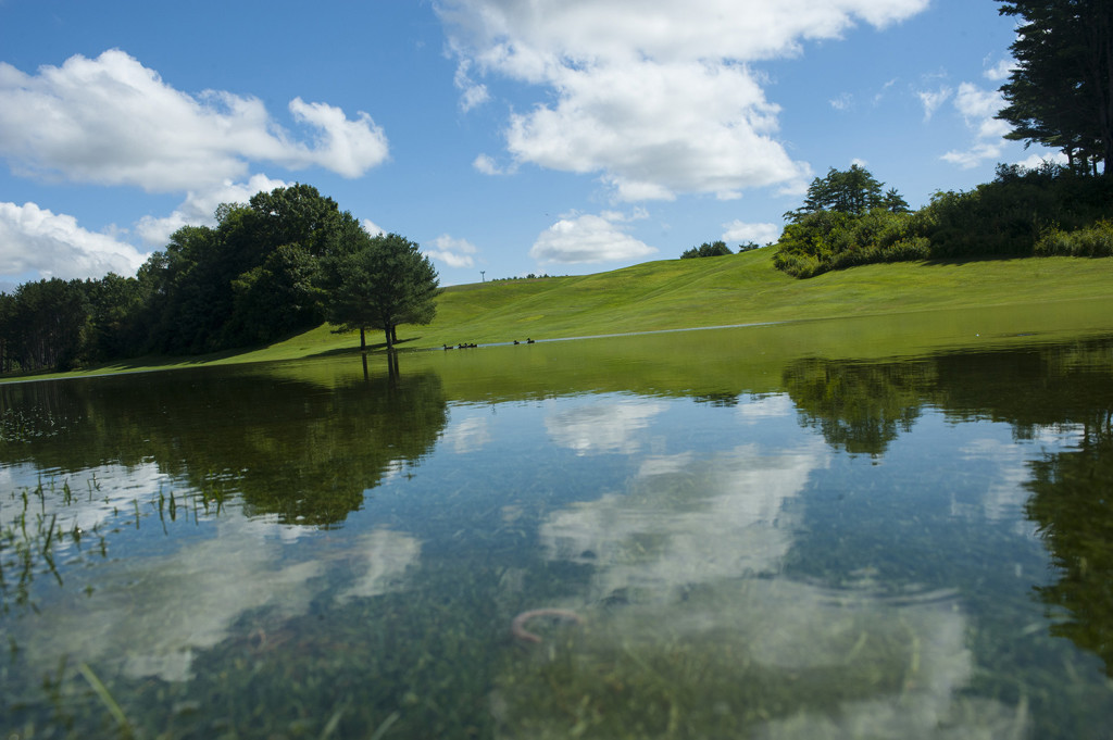 The fourth hole of the North Course at the Riverside Municipal Golf Course was flooded after Wednesday's heavy rains.