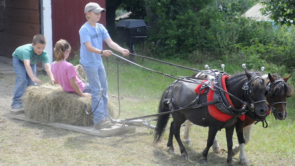 Logan Robinson, 10, drives his team of miniature horses Sunday with his twin sister, Lauren, and their buddy, Carter Currier, 10, of Oxford. The Robinsons, of Litchfield, competed with the team during the farmer's scoot on the last day of Monmouth Fair. Staff photo by Andy Molloy