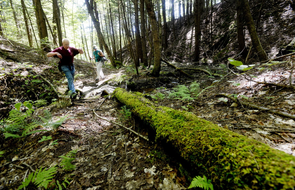 Bob Winship, a former president of the Greater Lovell Land Trust, hikes through a ravine in the Kezar River Preserve in Lovell.