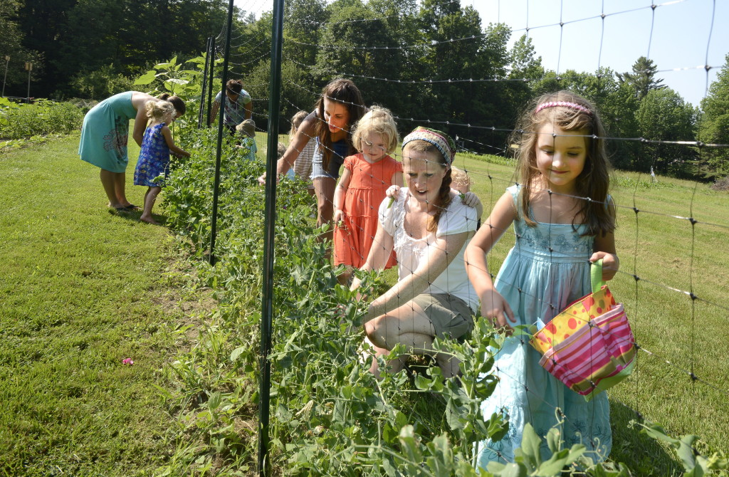 Stephanie O'Neil (second from right) picks peas with students in a gardening class for moms and their children. John Patriquin/Staff Photographer