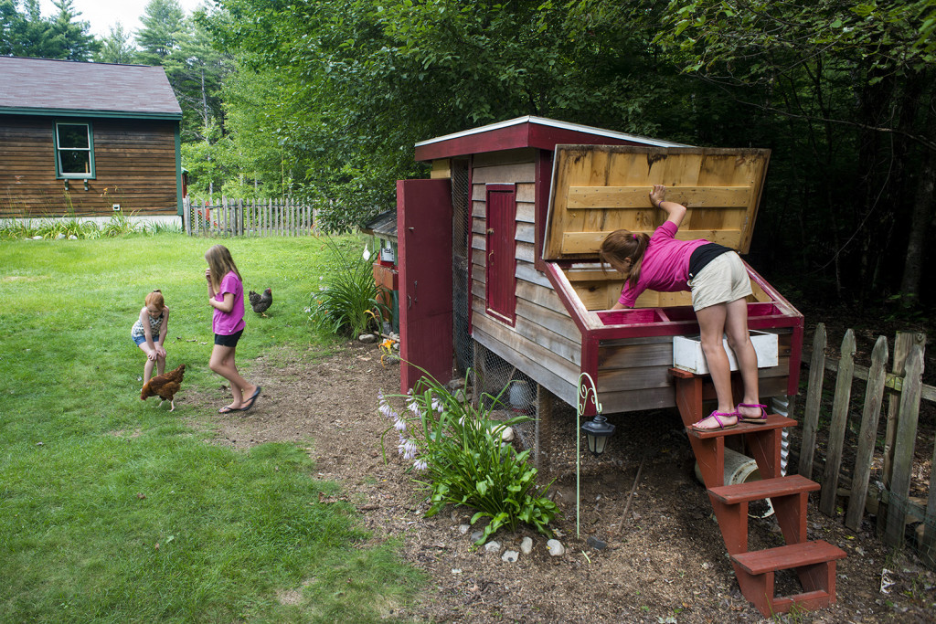 """Poppi Gleason (from left), and her sisters, Maezy and Ava, tend to their chickens and look at the eggs in their """"Chicken Hotel."""""""