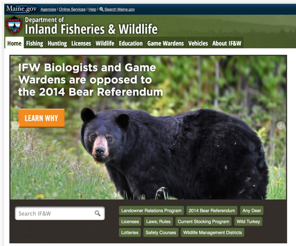 Inland fisheries and wildlife department takes new role as for Maine fish wildlife