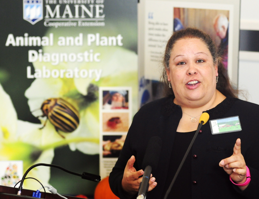 Julie-Marie Bickford, executive director of the Maine Dairy Industry Association, speaks at a news conference held Tuesday in Augusta in support of Question 2 on the November ballot.