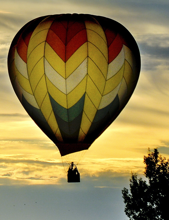 More than 550 pilots are participating in this year's Albuquerque balloon fiesta.