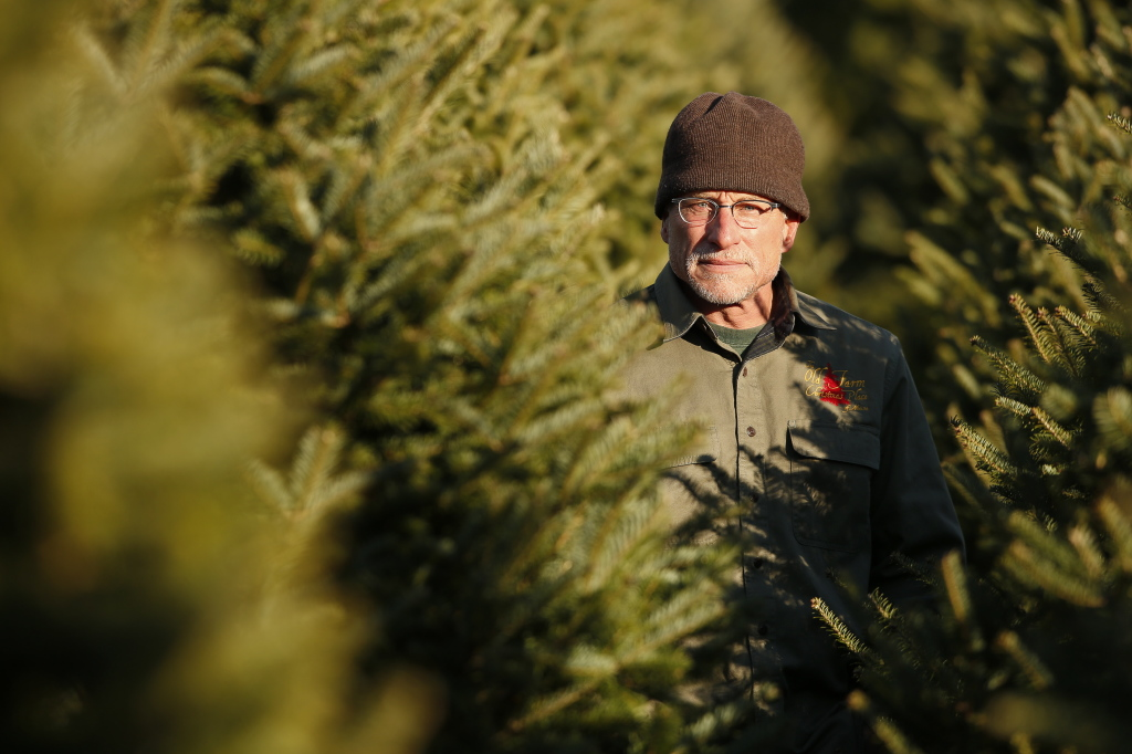 :Christmas tree farmer Jay Cox of Cape Elizabeth is among the policy holders facing a 13.4 percent hike in his Anthem insurance premiums. Since 2009, the average annual increase had been 4 percent until now, he said. Carl D. Walsh/Staff Photographer