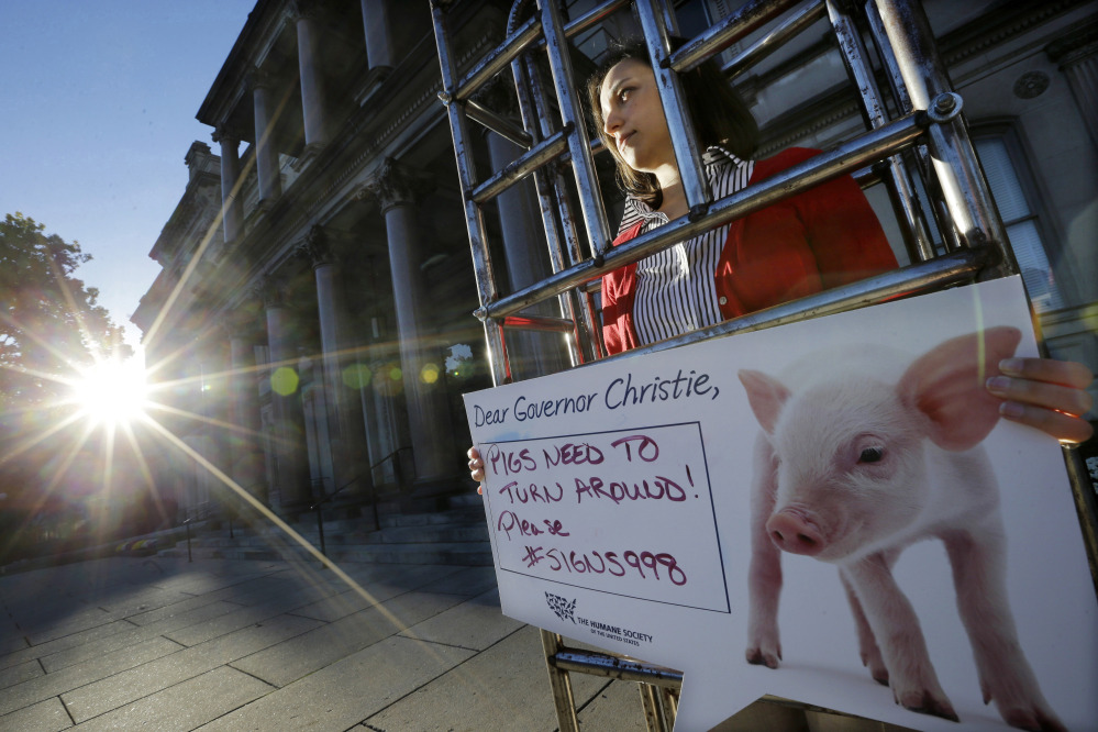 """2014 Associated Press File Photo Sarah Swingle, with the Humane Society of the United States, stands in a human-sized """"gestation crate,"""" in front of the Statehouse in Trenton, N.J., as part of the society's effort to have Gov. Chris Christie sign legislation to require state agriculture officials to adopt regulations concerning confinement of pregnant pigs. Christie vetoed the bill."""