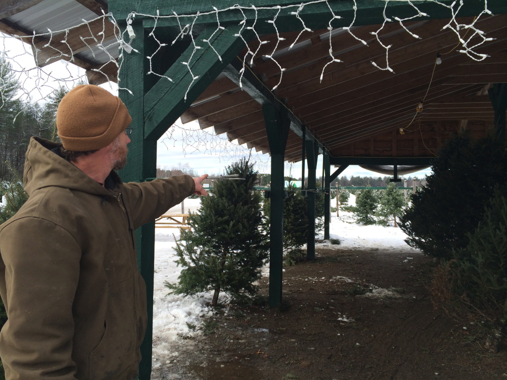 """Todd Murphy, owner of Trees to Please in Norridgewock, points to the spot where he says about a dozen trees were stolen overnight Saturday. """"We know theft is going on. and we're trying to control it. It feels bad,"""" he says. Staff photo by Rachel Ohm"""