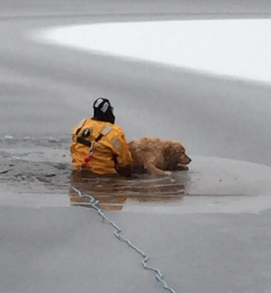 Dakota is pulled out of Little Ossipee Lake by Capt. Tom Langevin – known in the Waterboro Fire Department as Dr. Dolittle for his way with animals –  Wednesday morning.