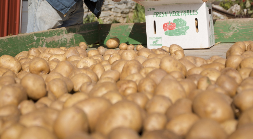 White potatoes are rich in potassium and fiber but are often served in the form of french fries, negating, critics say, their nutritional value.