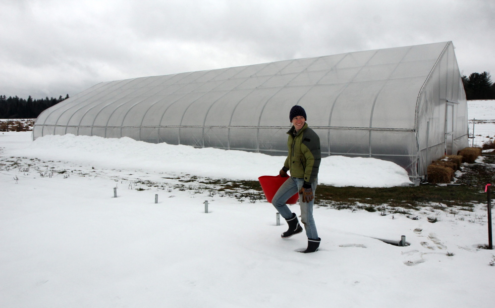 Katherine Creswell, farm manager at Kennebec Valley Community College's Harold Alfond Campus in Hinckley, makes her way through the snow outside an unheated greenhouse, called a high tunnel, which allows plants to be nurtured in winter. The plants don't grow, but remain fresh until picked.