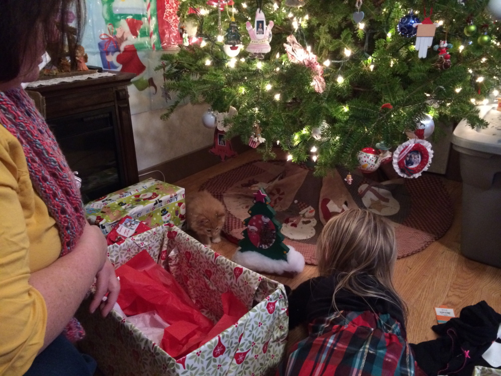 Amelia Dee, 3, gives her new kitten a hug on Christmas at her grandmother's home in Jay. Cupid was delivered by a Franklin County Animal Shelter volunteer.