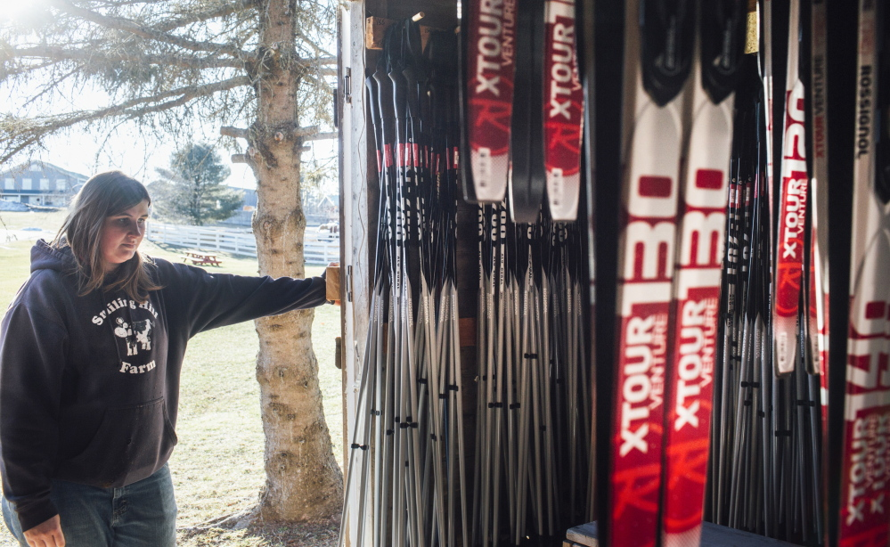 """Hillary Knight, barnyard and cross-country ski manager at Smiling Hill Farm in Westbrook, looks at the rental skis Friday. """"It would be nice to have some snow on the ground, some people here and some income coming in,"""" she said."""