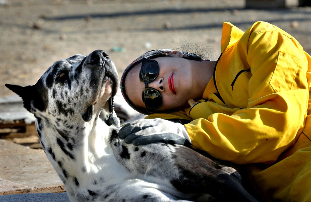 Homa Rashid, a lawyer and volunteer at the Vafa Animal Shelter, rests with a dog, in the city of Hashtgerd 43 miles west of the capital Tehran, Iran. More than 500 dogs find care and affection at the Vafa Animal Shelter, which was established through an endowment in 2004 and is the country's only licensed animal refuge.