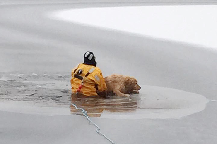Capt. Tom Langevin of the Waterboro Fire Department helps Dakota get back up on the solid ice after the dog fell through into Little Ossipee Lake. Waterboro Fire Department photo