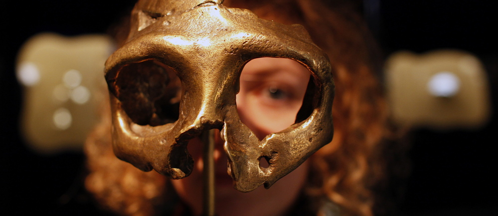 A girl looks through the replica of a Neanderthal skull displayed in the Neanderthal Museum in Krapina, Coatia. Scientists say the shape of the Neanderthal skull caused people to wrongly assume that they were very different from and inferior to modern humans.