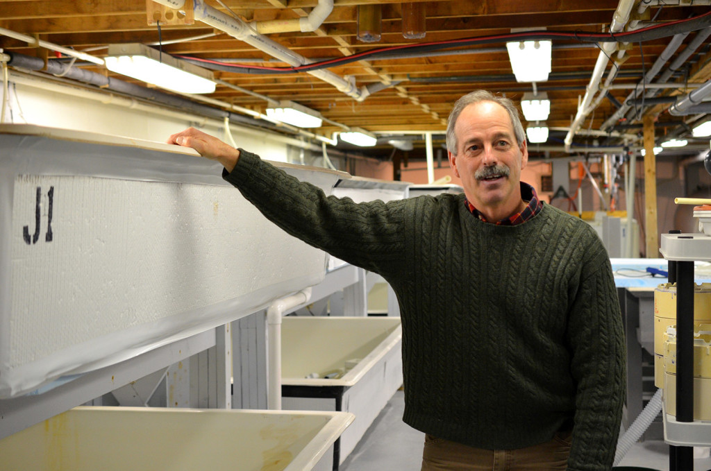 """Bill Mook stands in the hatchery operation at Mook Sea Farm in Walpole. """"When you look at the science of what we know about lobsters and how they are going to be affected by ocean acidification, we essentially are clueless,"""" Mook said."""